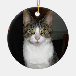 Tabbykatze mit großen grünen Augen Rundes Keramik Ornament