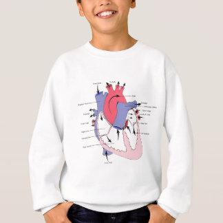 Tabelle 2. Normal-Herz Function.jpg Sweatshirt