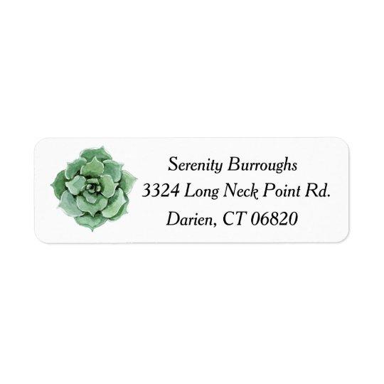 Tadelloses grünes saftiges Kaktus-Aquarell mit