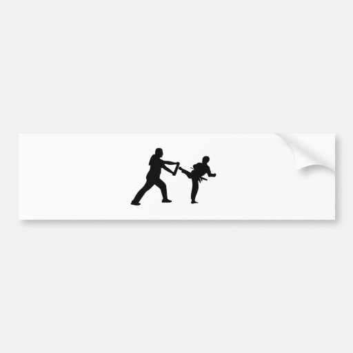 Taekwondo Autoaufkleber