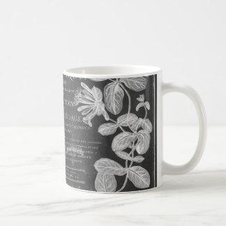 Tafel scripts französisches botanisches kaffeetasse