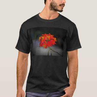 Tageslicht-Hafen T-Shirt