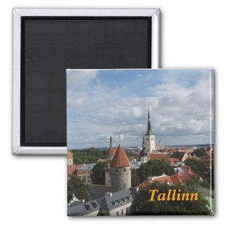 Tallinn frigde Magnet Quadratischer Magnet