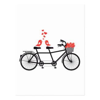 Tandemfahrrad mit niedlichen Liebevögeln Postkarte