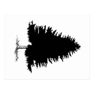 Tannen-Baum Postkarte