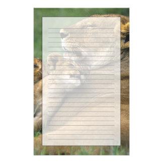 Tansania, Ngorongoro Krater. Afrikanische Briefpapier