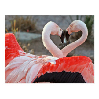 Tanz der Liebe Postkarte