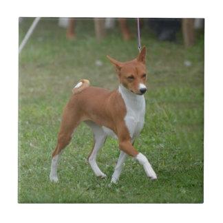 Tänzelnder Basenji Hund Keramikfliese