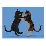 Tanzen-Katzen Postkarten