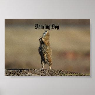 Tanzenhund Posterdrucke