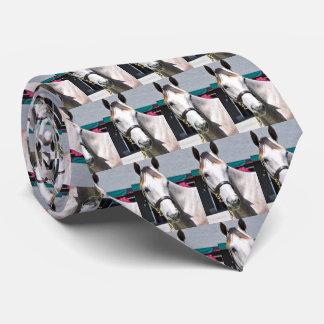 Tapit - auswendiges angesagtes #140 individuelle krawatte