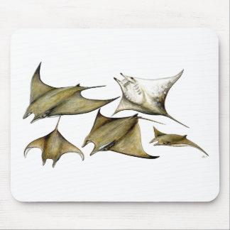 Tarapacana Mobula - Schwacher Chilean Decken Mousepad