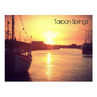 Tarpon- Springspostkarte Postkarte