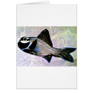 Taschenlampen-Fische Karte