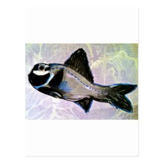 Taschenlampen-Fische Postkarte