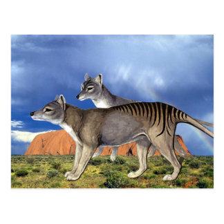 Tasmanische Tiger-Postkarten Postkarte