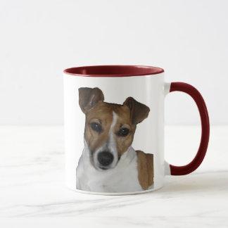Tasse Jack Russell Terrier