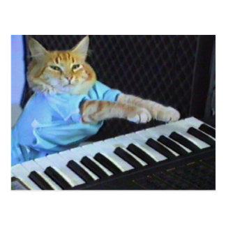 Tastatur-Katzen-Postkarte! Postkarte