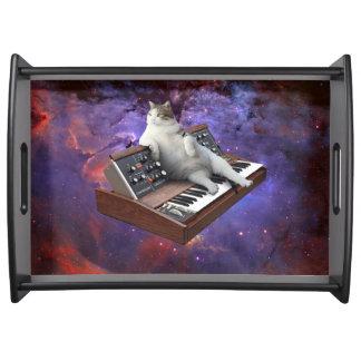 Tastaturkatze - Katze memes - verrückte Katze Tablett