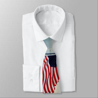 Tattered Flagge in den Winden der Änderung Krawatte
