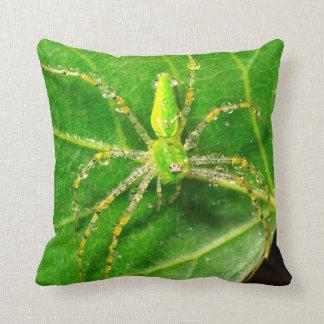Tau auf einer grünen Luchs-Spinne Zierkissen