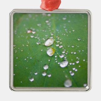 Tau-Tropfen Silbernes Ornament