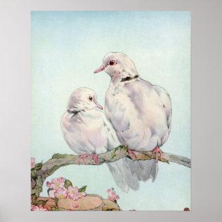 Tauben durch E.J. Detmold Poster