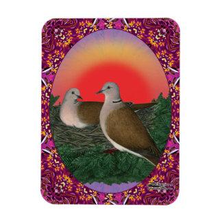 Tauben gerahmt vinyl magnet