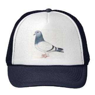 Tauben-Hut Netz Caps