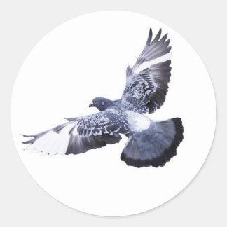 Tauben-runder Aufkleber