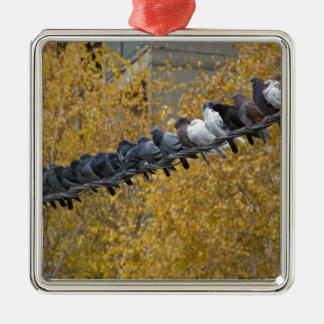 Tauben Silbernes Ornament