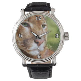 TCWC - Puma-Berglöwe-Kunst Uhr