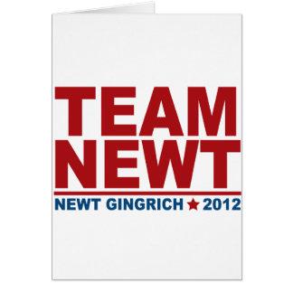 Team Newt Gingrich 2012 Karte