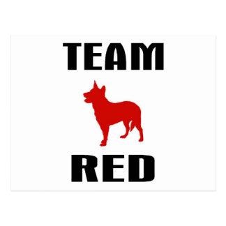 Team-Rot Postkarte