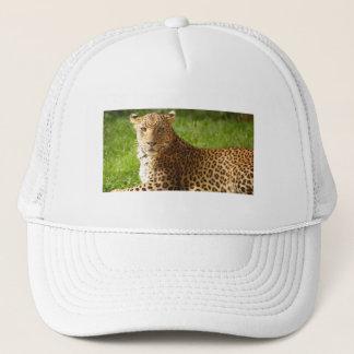 TecBoy.net-Hut - Leopard Truckerkappe