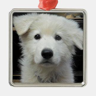 teddy_002.jpg silbernes ornament
