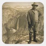 Teddy Roosevelt-Gletscher-Punktyosemite-Tal Aufkleber