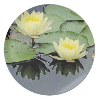 Teich-Wasser-Garten-Wasserlilie-Blume Teller