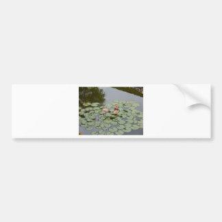 Teichlotos-Blume verlassen Autoaufkleber
