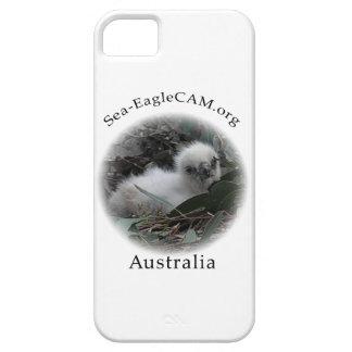 Telefonkasten SeaEagle Hatchling I Etui Fürs iPhone 5