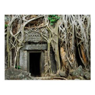 Tempel angkor postkarte