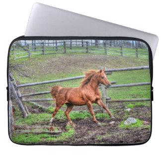 Temperamentvolles Dun-Pony, Pferd, das auf Ranch Laptopschutzhülle
