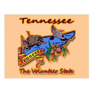 Tennessee der freiwillige Staatracoon-Blumen-Vogel Postkarte