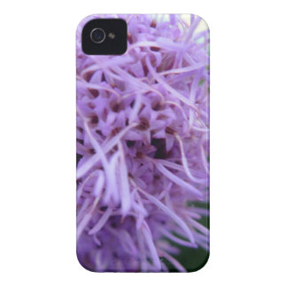 Tentakel-Spinnen-Veilchen-Blume Case-Mate iPhone 4 Hüllen