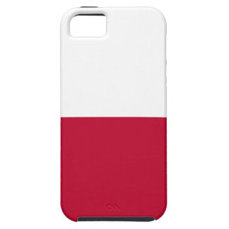 Texas-Flagge - Texan-Stolz Tough iPhone 5 Hülle