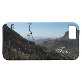 Texas-Gebirgslandschaft mit Ocotillo Etui Fürs iPhone 5