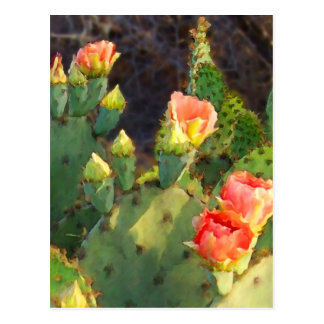 Texas-Kaktus 2 Postkarte