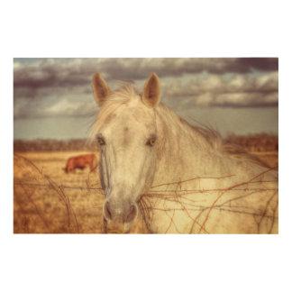 Texas-Pferd Holzwanddeko