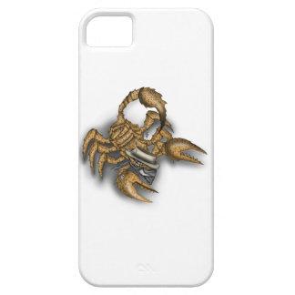 Texas-Skorpion iPhone 5 Cover