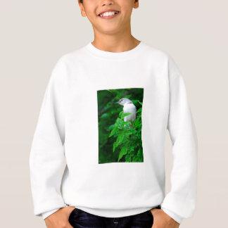 Texas-Spottdrossel Sweatshirt
